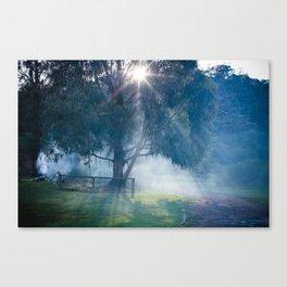 lerderderg state park Canvas Print