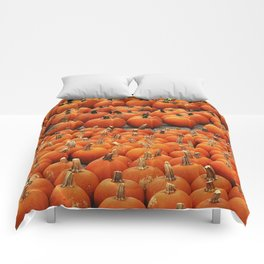 More than a peck of pumpkins at Peck's Produce Farm Market! Comforters