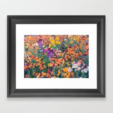 COLOUR POP // SPRING FLOWERS  Framed Art Print