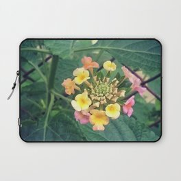 Tiny beauty Laptop Sleeve
