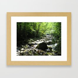 Big Creek Framed Art Print