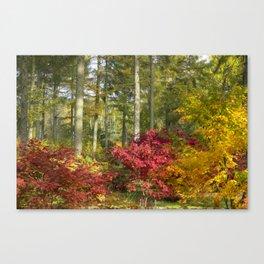 Autumn Arboretum Canvas Print