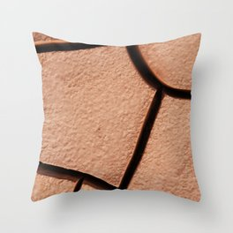 Cracked Mud Throw Pillow