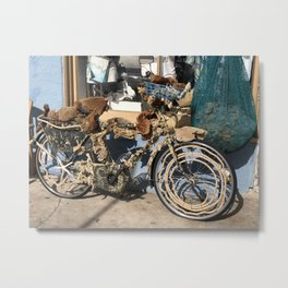 Soft Ride Metal Print