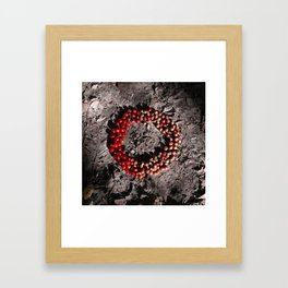 Cycle of Life Framed Art Print
