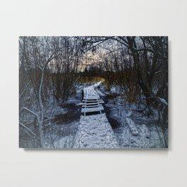 An Icy Winter's Path Metal Print