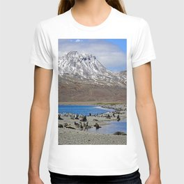 Fur Seals, King Penguins and Snowy Mountains T-shirt