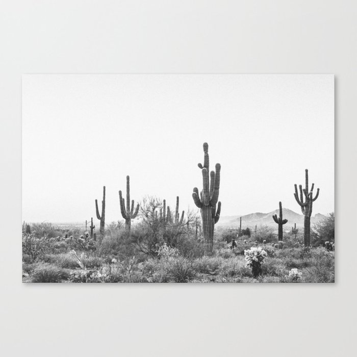DESERT / Scottsdale, Arizona Leinwanddruck