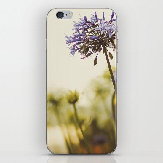 Agapanthus iPhone & iPod Skin