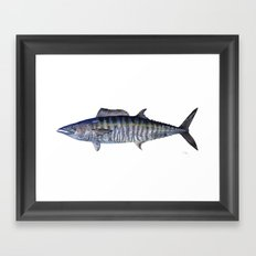Wahoo  Framed Art Print
