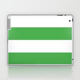 Even Horizontal Stripes, Green and White, XL Laptop & iPad Skin