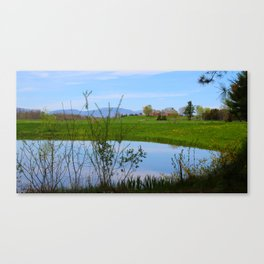 Think Spring Canvas Print