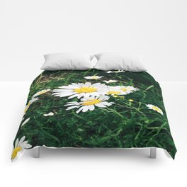 Oxeye Daisy Comforters