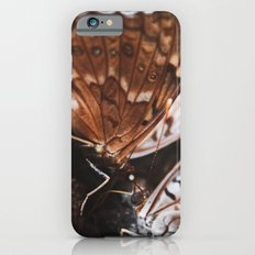Two Butterflies iPhone 6s Slim Case