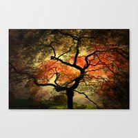 japanese Canvas Prints featuring Japanese by Philippe Sainte-Laudy
