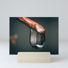 Fallen Rain Drop. Macro Photography Mini Art Print