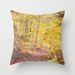 Take a Skip Throw Pillow