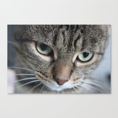 Edgar (100% of proceeds donated to charity) Canvas Print