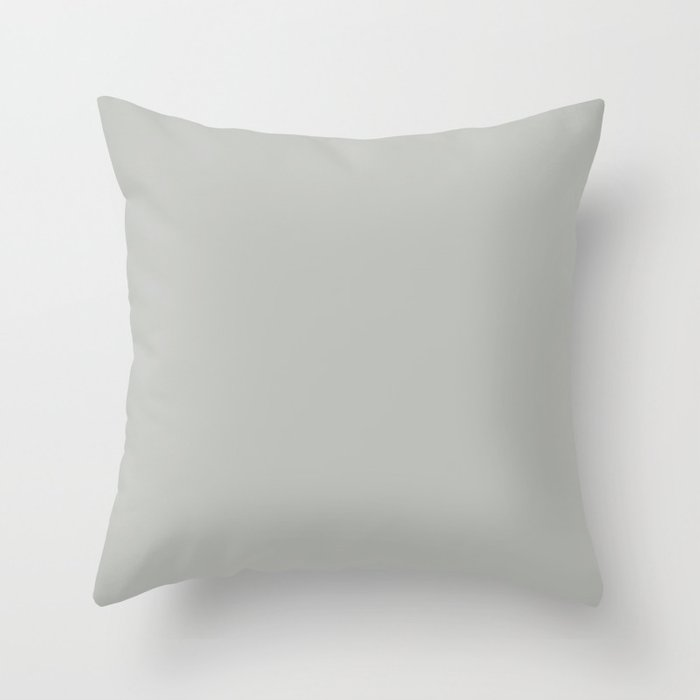 BM Metropolitan Pastel Gray Color of the Year 2019 - Solid Color Throw Pillow