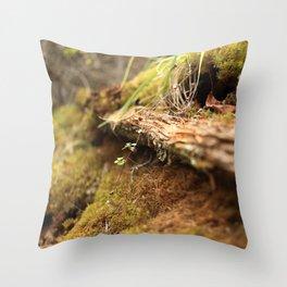 Grande Cache 3 Throw Pillow