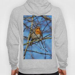 European Robin Donegal Ireland 37 Hoody