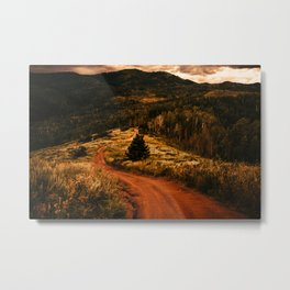 Paths Lesser Chosen Metal Print