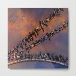 Pigeon Gangs Metal Print