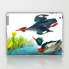 Red-breasted Merganser Bird Laptop & iPad Skin