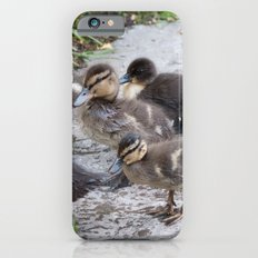 Baby Ducklings in the park #1 #decor #art #society6 Slim Case iPhone 6s