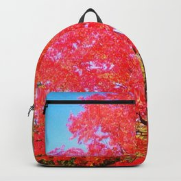colors 2 Backpack