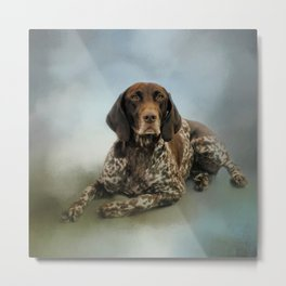 Waiting For A Cue - German Shorthaired Pointer Metal Print