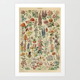 Flower Bouquet Art Prints For Any Decor Style Society6