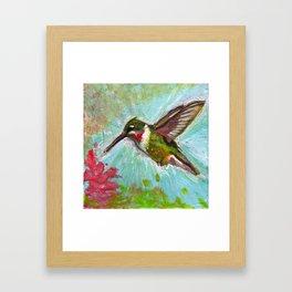 Ruby-throated Hummingbird Framed Art Print
