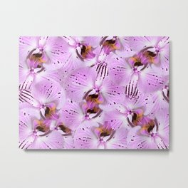 Plum Orchids Metal Print