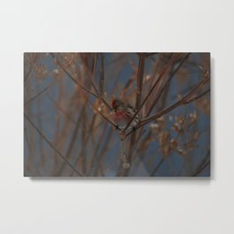 Firm Grip Metal Print