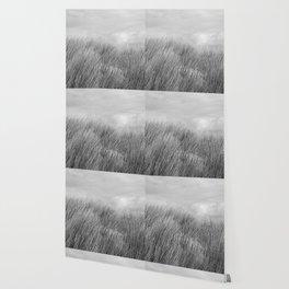 Beach grass - black and white Wallpaper