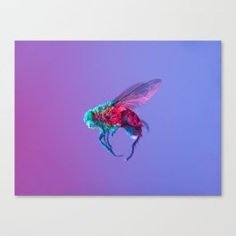 Bugged #10 Canvas Print