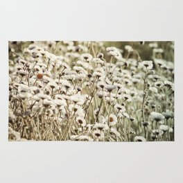 Life is But a Dream -- Vintage Wildflowers Daisies Asters Fleabane Rug