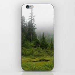 Pond of the False Prophet iPhone Skin