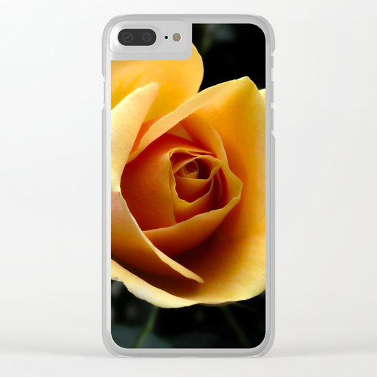 orange rose Clear iPhone Case