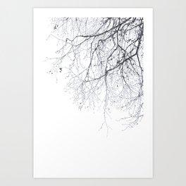 BLACK BRANCHES Art Print