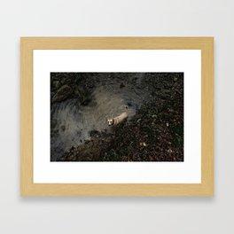 Jalebi Portrait Framed Art Print