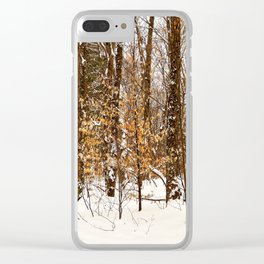 Maple Beech Forest in the Winter Clear iPhone Case