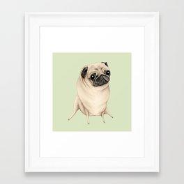 Sweet Fawn Pug Framed Art Print