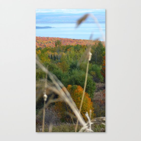 Fall in colors Canvas Print