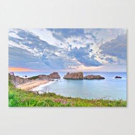 A protected beach Canvas Print