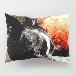 Boston Terrier (Jake) Pillow Sham