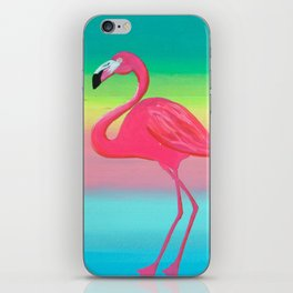 Not Afraid of Colors iPhone Skin