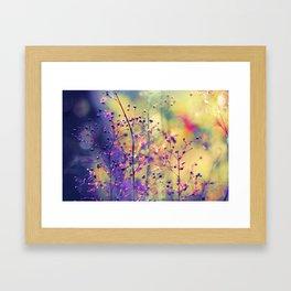 Way of Sun Framed Art Print