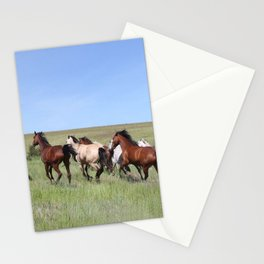 Running Horses Photography Print Stationery Cards
